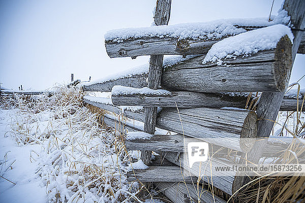 Wooden fence with snow on farm in winter Wooden fence with snow on farm in winter