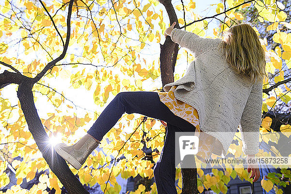 Girl climbing tree during autumn
