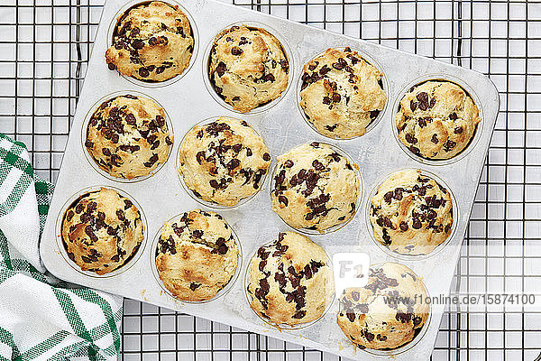 Fruit muffins in muffin tin