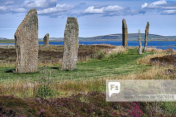 UK  Scotland  Orkney Islands is an archipelago in the Northern Isles of Scotland    Atlantic Ocean  he ancient standing stones of the Ring of Brodgar in the Orkney Islands off the north coast of Scotland. This monument in the heart of the Neolithic Orkney World Heritage Site is believed to have been built between 4000 and 4500 years ago. Originally built with sixty stones in a circle over 100 metres across  fewer than half of the stones still stand. The tallest of the stones is a little over 4.5 metres (15 feet) tall