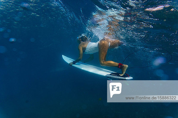 Indonesia  Underwater view of adult woman diving with surfboard in hands