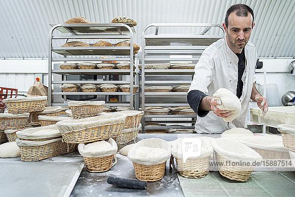 Bäcker legt Teig in Bäckerei in Korb Bäcker legt Teig in Bäckerei in Korb