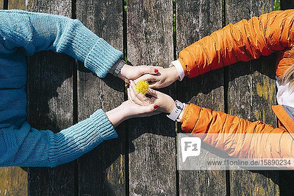Zwei Freunde halten sich an einem Holztisch an den Händen  Draufsicht