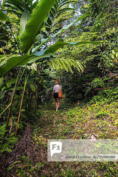 Girl walking in the tropical nature of the Republic of Cuba  Caribbean  Central America.