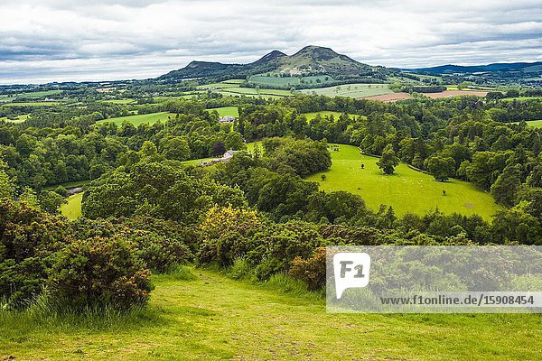 The three peaks of Eildon Hill seen from Scott's View  Eildon Hill lies just south of Melrose  Scottish Borders District  Scotland  United Kingdom  Europe.