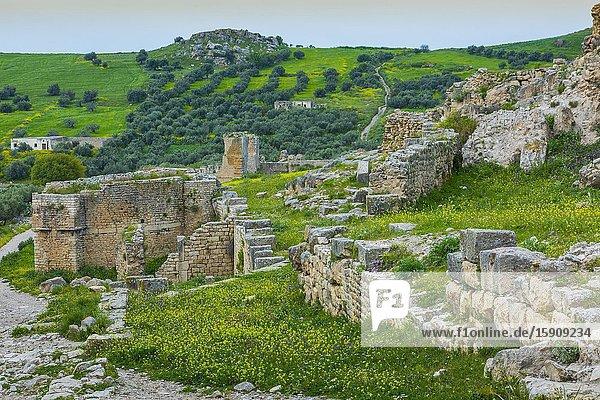 Dougga Roman city ruins. Tunisia.
