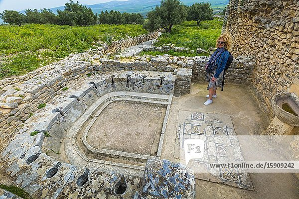 Latrines. The bath of the Cyclopses. Dougga Roman city ruins. Tunisia.