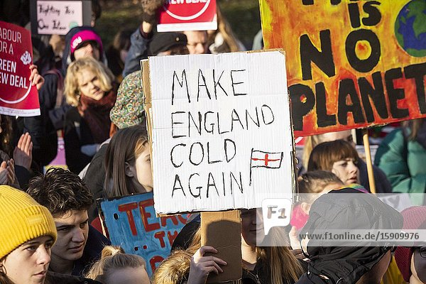 Newcastle upon Tyne  England. UK. 29th November  2019. Climate change protest in Newcastle upon Tyne.