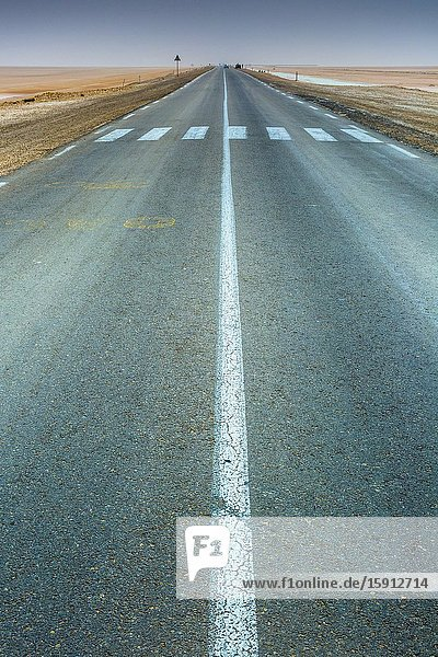 Road in Chott el Djerid salt lake. Tunisia  Africa.