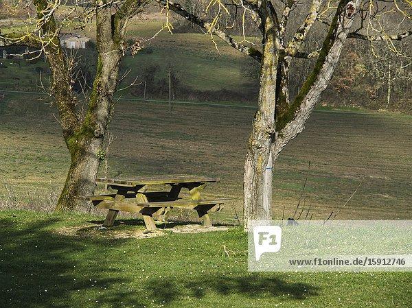 Picnic table and bare trees  Tourtres  Lot-et-Garonne Department  Nouvelle Aquitaine  France.