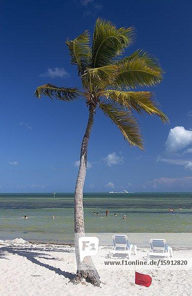 Beautiful beach in key west  Key West  Florida  USA.