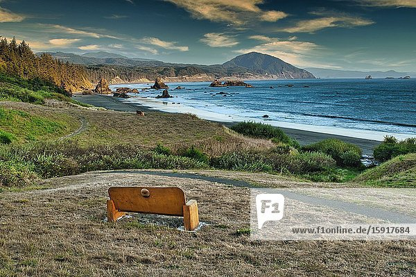 Park bench and Pacific Coast at Port Orford  Oregon  USA.