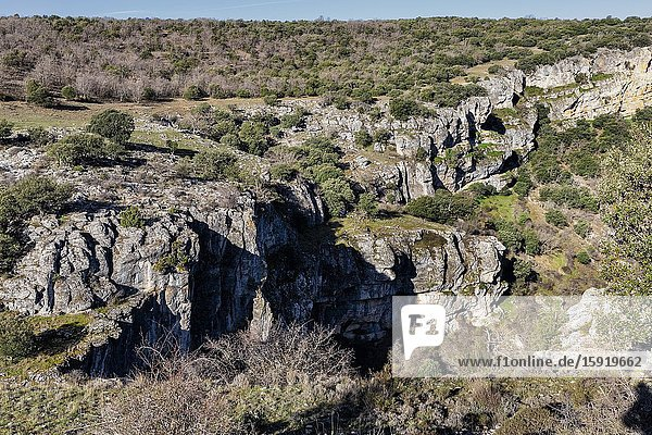 Cliffs and vegetation at The Gorge of Sweet river. Guadalajara. Spain. Europe.
