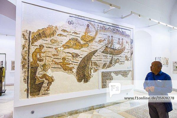 Mosaic with a fishing motiv. Bardo National Museum. Tunis city. Tunisia  Africa.