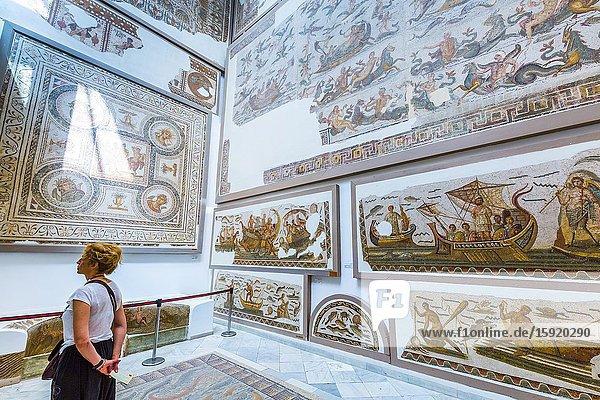 Mosaic. Bardo National Museum. Tunis city. Tunisia  Africa.