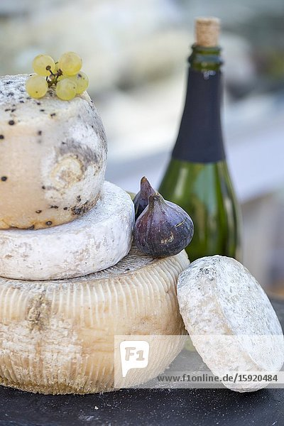 Turin in Piedmont on September 24  2016 in Italy. Borsa square during the food festival Terra Madre Salone del Gusto. Cheeses and wines detail.
