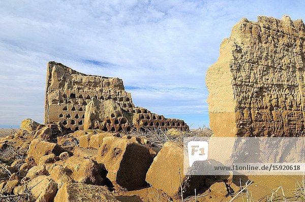 Dovecote in ruins Lagunas de Villaf?fila Natural Reserve. Zamora province. Tierra de Campos. Castilla y Le?n. Spain