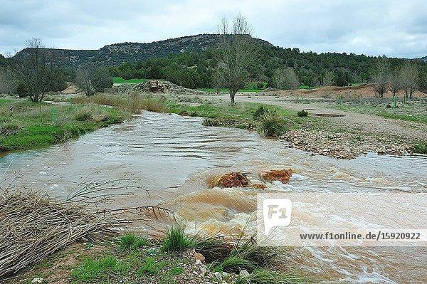 Ther river Ablanquejo overflooded. The Alto Tajo Natural Park. Huertahernando town  Guadalajara province  Spain