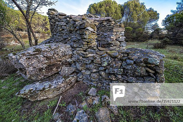 Old shepherd's shelter at the pinewood. Madrid. Spain. Europe.