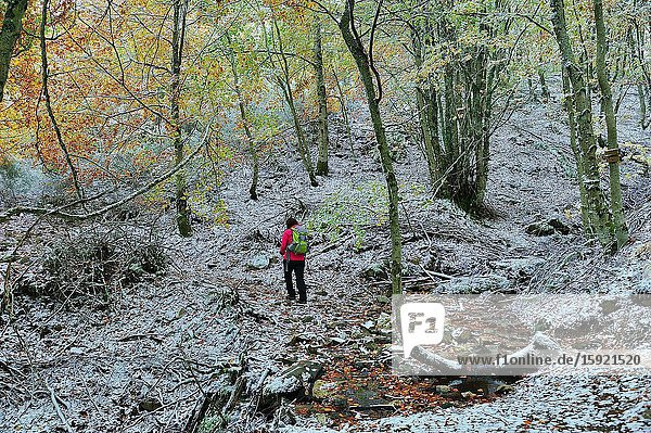 Hiker in the Valley of River Riaza in the Sierra de Ayllón. This is a range mountain in the Central System. Segovia province  Spain