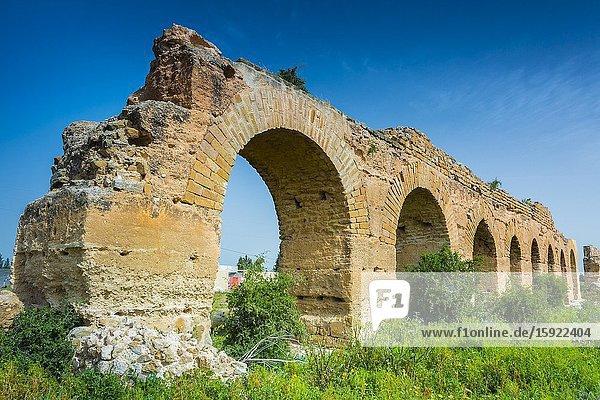 Zaghouan Aqueduct or Aqueduct of Carthage. Tunisia  Africa.