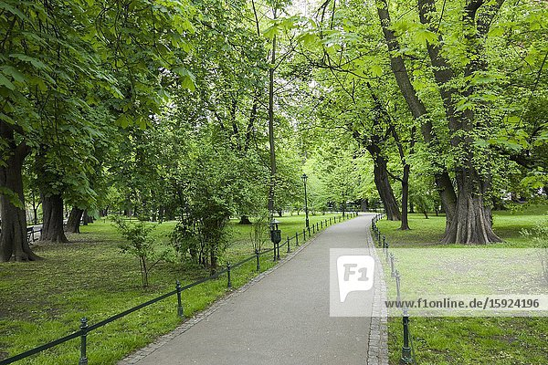 Park in Old Town Krakow Poland Europe EU Greenspace nature trees green.
