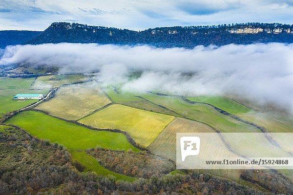 Meadows area and fog. Aerial view. Aranarache area. Navarre  Spain  Europe.
