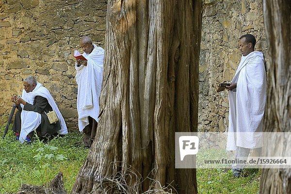 Ethiopia  Gonder  World Heritage Site  Debre Berhan Selassie church  Holy Trinity mass  Christian devotees in prayer.