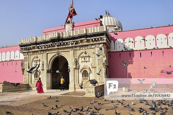 India  Rajasthan  Bikaner region  Deshnoke  Karni Mata Temple also known as the Temple of Rats.