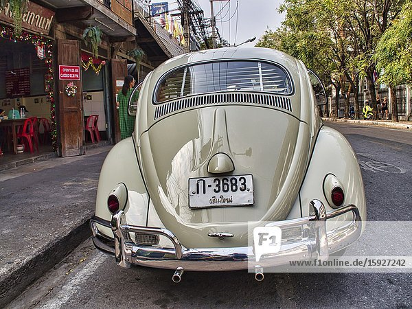 Rear view of classic Volkswagen Beetle  Chiang Mai  Thailand.