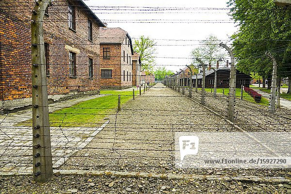 Auschwitz Birkenau Concentration Camp OŠ›wiÄ. cim Barbed wire electrified fence Museum Southern Poland Europe EU UNESCO.