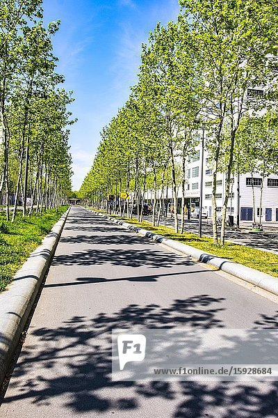 Torenallee lane at Strijp-S  Eindhoven  The Netherlands  Europe.