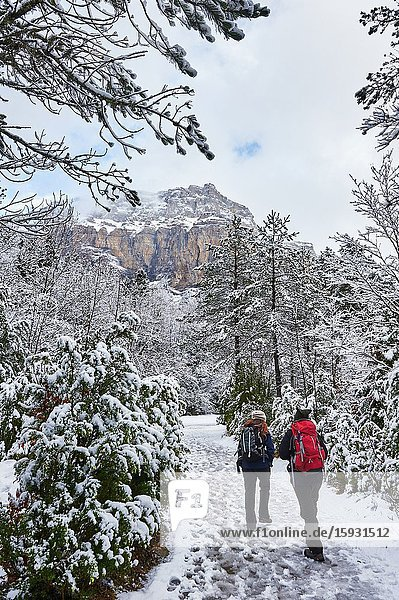 Pyrenees: Two women hiking along snowy path in the National park of Ordesa and Monte Perdido (Huesca province  Aragon region  Spain)
