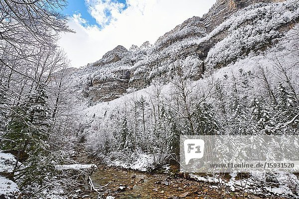 Pyrenees: Arazas river along snowy alpine landscape in the National park of Ordesa and Monte Perdido (Huesca province  Aragon region  Spain)