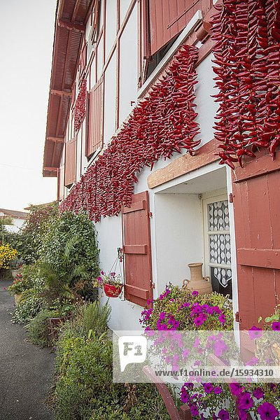Espelette village in French Basque country  house walls are traditionally decorated with Red Pappers. Labourd  Atlantic Pyrenees  Aquitaine  France.