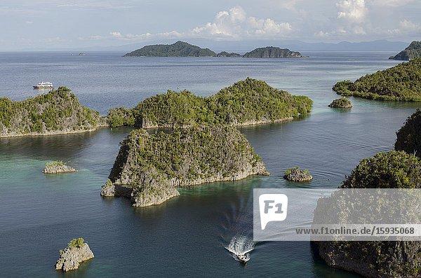 Speedboat  Pianemo Viewpoint  Pianemo Island  near Waigeo Island  Raja Ampat  Indonesia.