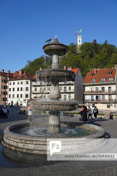 Fountain in New Square  Vodnjak na Novem trgu  Ljubljana  Slovenia  Europe