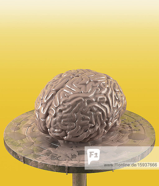 Clay brain on potter's wheel