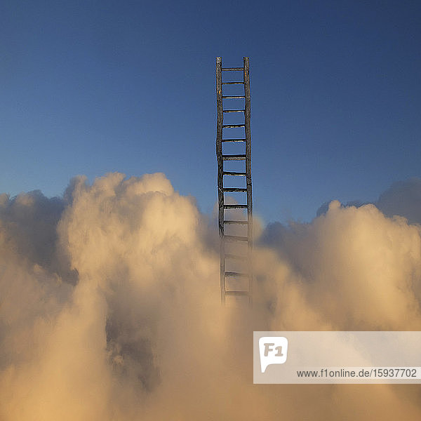 Ladder rising above clouds in sky