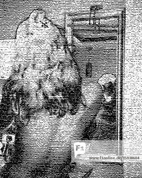 Half-Length Rear View Portrait of Woman Getting Ready in front of Mirror  3D Stereo Effect