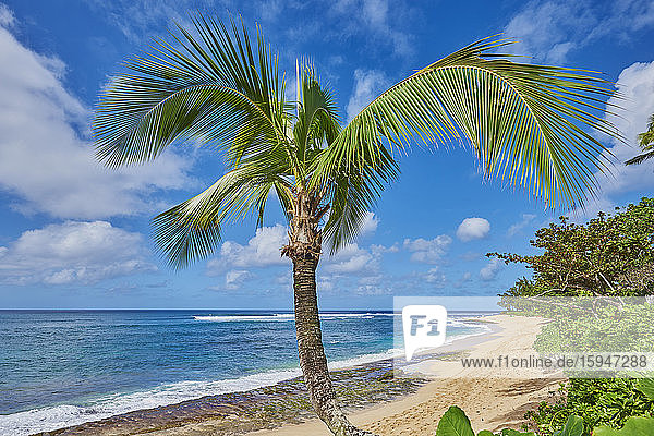 Sunset Beach  North Shore  Oahu  Hawaii  USA