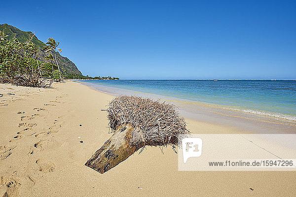 Kualoa Rock Beach  Oahu  Hawaii  USA