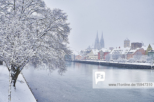 St. Peters Cathedral and Danube  Regensburg  Bavaria  Germany  Europe