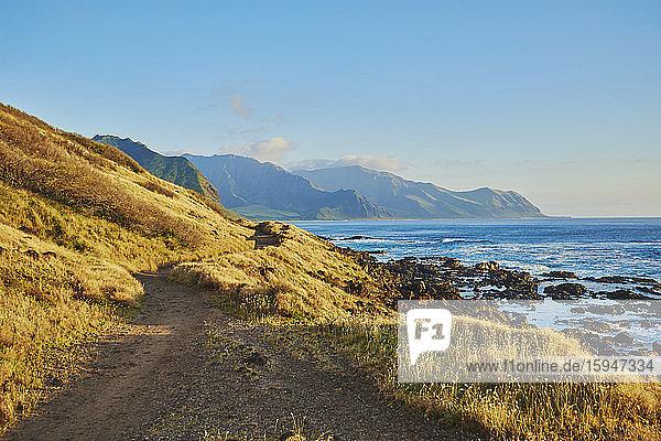 Ka'ena Point State Park  Oahu  Hawaii  USA