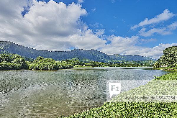 Wai'hole Beach Park  Oahu  Hawaii  USA