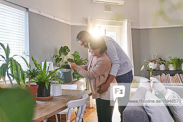 Liebespaar pflegt Zimmerpflanzen im Esszimmer