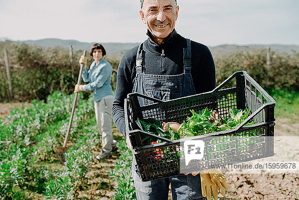 Smiling man standing in vegetable garden  holding plastic create with freshly picked vegetables.