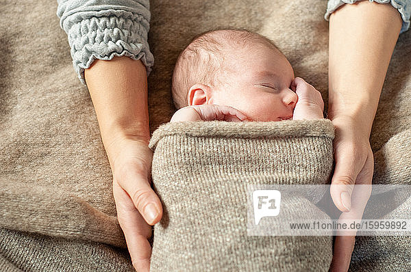 A four week old baby swaddled in a brown blanket  being held by her mother  asleep.