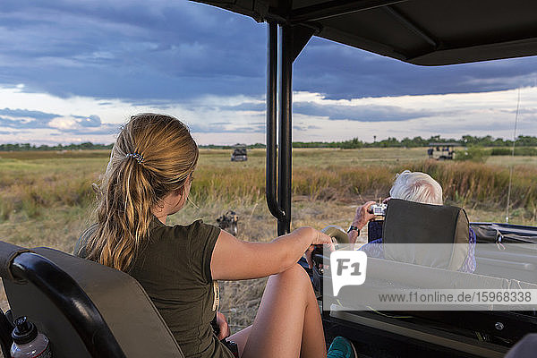 Ein junges Mädchen und ein älterer Mann sitzen in einem Safari-Jeep und beobachten ein Rudel wilder Hunde.