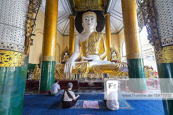 Pilger  die in der Shwedagon-Pagode beten  Rangoon (Rangoon)  Myanmar (Burma)  Asien